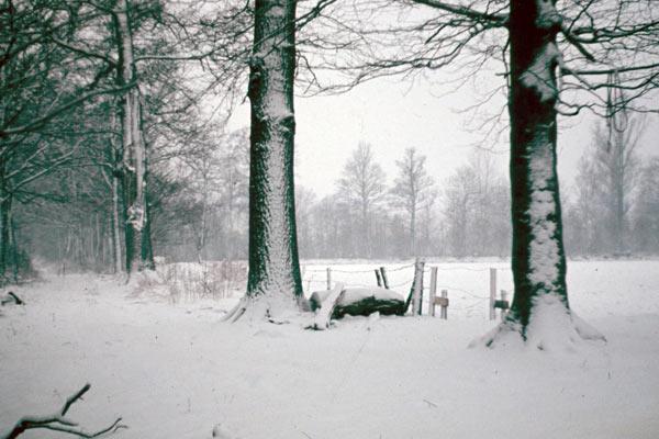 Deepinksteg in de winter - foto rond 1955 vanaf erve Ramaker